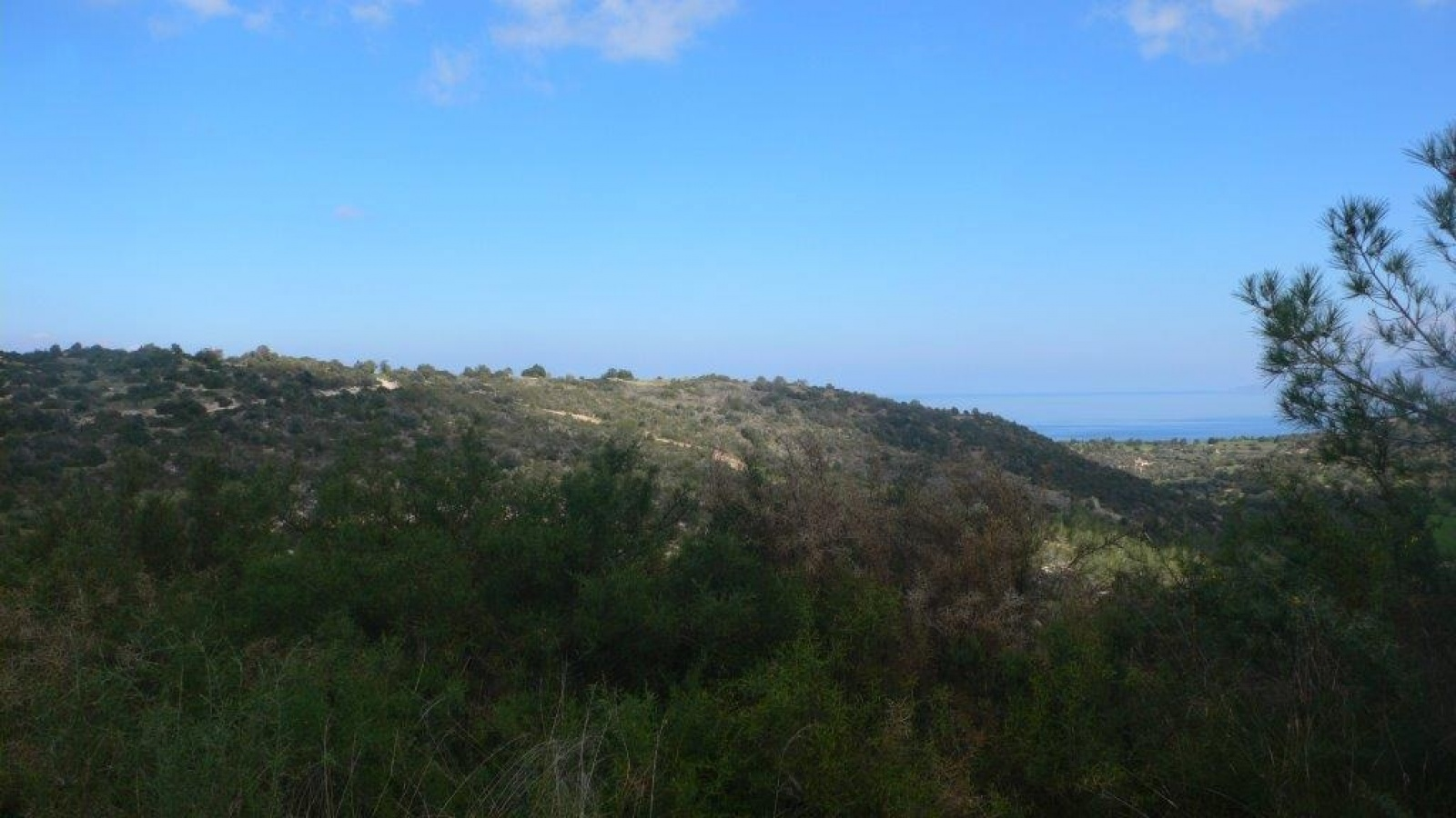 Residential Land - Neo Chorio Residential Lnd