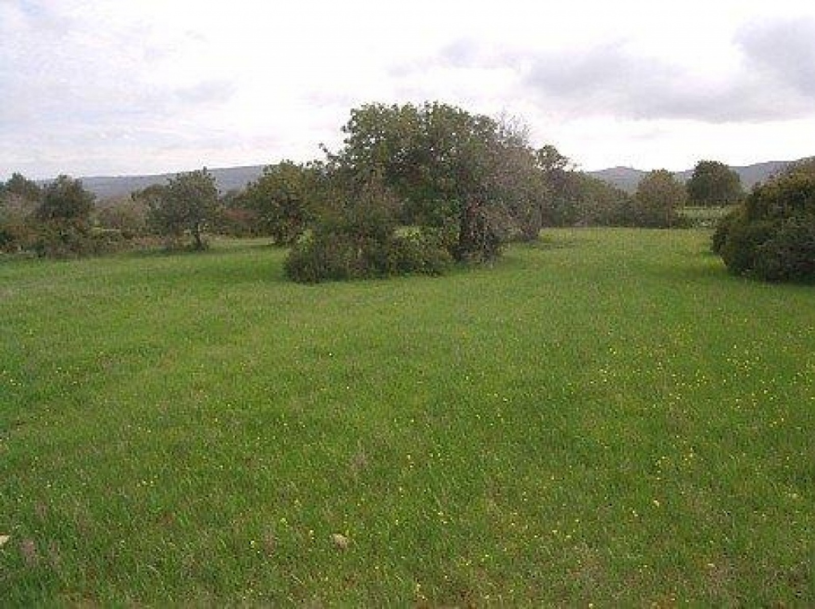 Residential Land - Agriculture Land for Sale WITH TITLE DEEDS